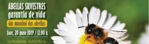 As Abellas Silvestres: Garantía de Vida. Actividade didáctica no Día Mundial das Abellas