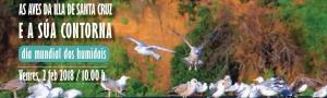 As aves da Illa de Santa Cruz: Roteiro interpretativo no Día Mundial dos Humidais 2018