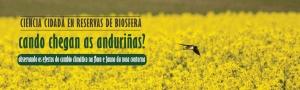 Cando chegan as anduriñas?: observando os efectos do cambio climático na flora e fauna da nosa contorna