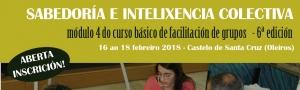 Sabedoría e intelixencia colectiva. Módulo 4 Curso Básico de Facilitación de Grupos