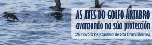 Obradoiro participativo 'As aves do Golfo Ártabro: avanzando na súa protección'