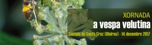 Jornada: La Avispa Velutina