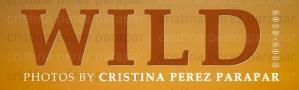 Exposicion Wild Cristina Parapar CEIDA