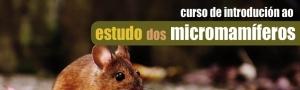 Curso Estudo Micromamiferos CEIDA