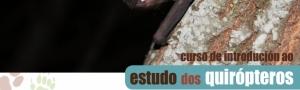 Curso de Introdución ao Estudo dos Quirópteros CEIDA