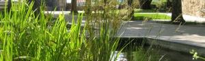 Municipios verdes. Programa de formación de técnicos y personal de servicios municipales en materia de infraestructura verde y gestión de la biodiversidad