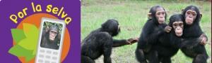 Mobilízate pola Selva CEIDA Jane Goodall