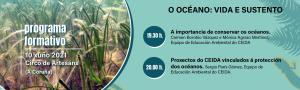 El océano: vida y sustento