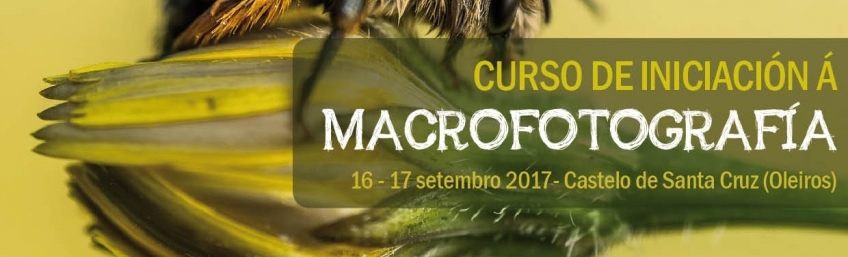 Curso de Iniciación á Macrofotografía CEIDA