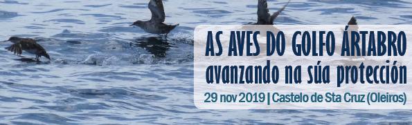 Taller participativo 'Las aves del Golfo Ártabro: avanzando en su protección'