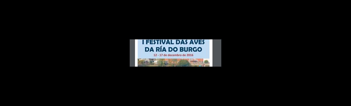 I Festival das Aves da Ría do Burgo