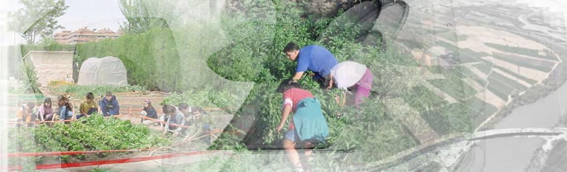 Guia Recursos RECIDA agricultura urbana