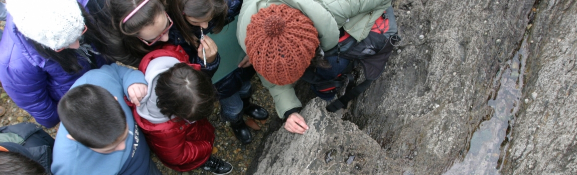 Misión Océanos: Programa de Educación Ambiental sobre el Medio Marino