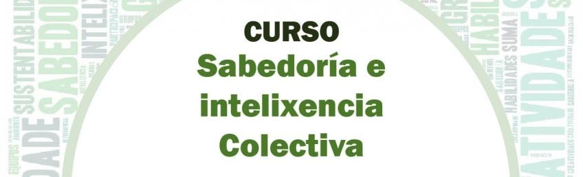Sabedoria e intelixencia colectiva curso basico facilitacion grupos CEIDA