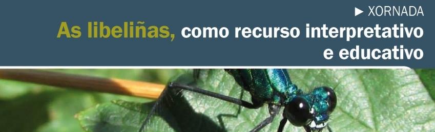 Curso Libeliñas CEIDA