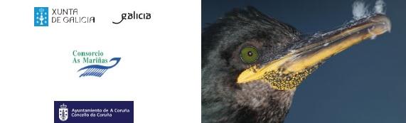 Curso Turismo Ornitoloxico CEIDA
