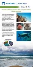Panel 1. Os océanos; fonte de recursos vitais para a humanidade; estanse esgotando. Relevancia social e económica dos nosos mares