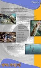 Panel 13. Peixes, ficarán o mar e os ríos sen peixes