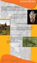 Panel 2. Biodiversidade. Un quebracabezas con millóns de pezas en continuo cambio