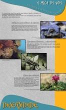 Panel 3. A arca da vida, diversidade de especies