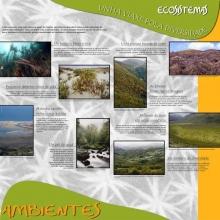 Panel 5 e 6. Ecosistemas, unha viaxe pola biodiversidade