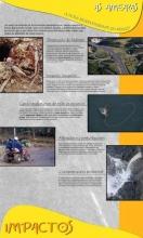 Panel 7. As ameazas, a nosa biodiversidade en perigo