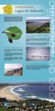 Panel 15. Humidal Protexido Lagoa e Areal de Valdoviño