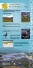 Panel 16. Humidal Protexido Ría de Ortigueira e Ladrido