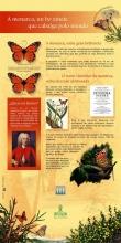 Panel 1: A monarca, un bo xinete que cabalga polo mundo