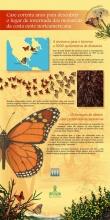 Panel 2: Case corenta anos para descubrir o lugar de invernada das monarcas da costa oeste norteamericana