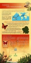 Panel 3: Á monarca sáenlle imitadoras