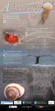 Panel 19. O mar precisa de leis da protección