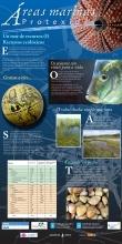 Panel 3. Un mar de recursos I. Recursos ecolóxicos