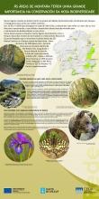 Panel 7: As áreas de montaña teñen unha grande importancia na conservación da nosa biodiversidade